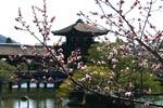 Heian - Kyoto