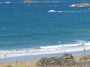 Vagues et surfs à la plage de la Garde