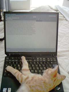 Pfff je peux plus écrire