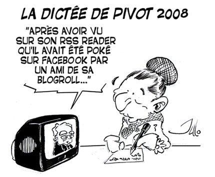 La dictée de Pivot 2008, par Julo