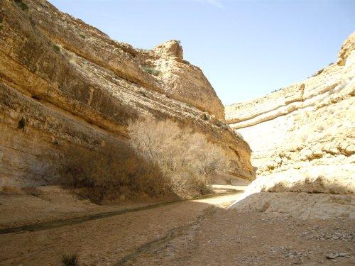 Décor StarWars - désert Tunisien