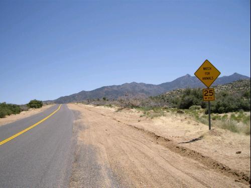 Route en Arizona