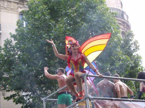 Papillon de lumière gay