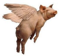 Attention Cochon Volant !!