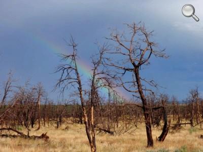 Mesa Verde National Park - Un arc-en-ciel après la pluie