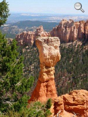 Bryce Canyon - Un exemple de hoodoo ou cheminée de fées