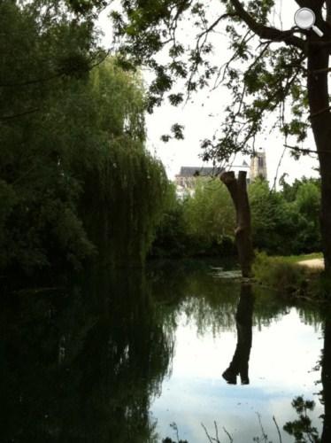Vue de la Cathédrale dans les marais de Bourges.