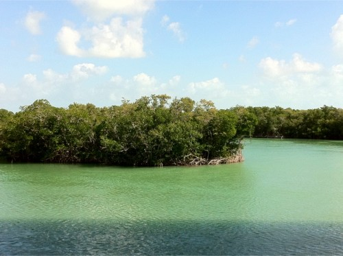 Vue de Key Largo - Floride