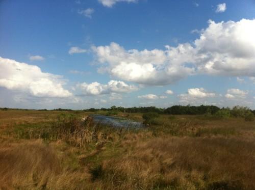 Parc des Everglades - Vue globale