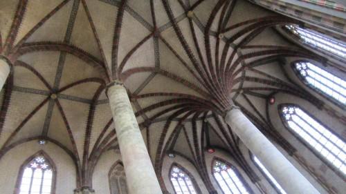 Palmier du Couvent des Jacobins