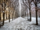 Première neige de l'année !